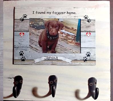 Magnetic Photo Frames, Photo Frames, Frames with magnets, magnets, photos, fridge frames, frames for the fridge, frames with magnets, dog leash holder, leash holder, dog leash holder with frame, dog leash holder with magnetic frame